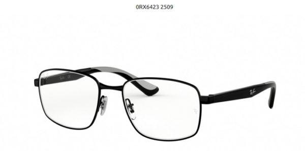 Ray Ban 0RX6423-2509-black
